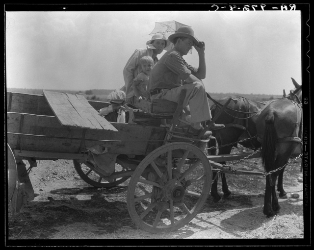"""Oklahoma roadside encounter day laborers. """"After three years, dry years, not a thing a fellow like me can do. I'd get out and go to California like the rest of them if I could get ahold of some money and get shed of my cows. Ain't done a day's work in four months"""" (cut off relief April 1, 1936)"""