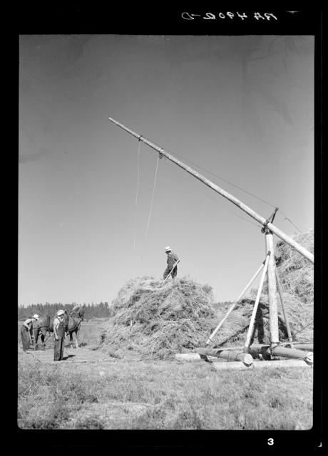 Operating a hay derrick near Goldendale, Washington