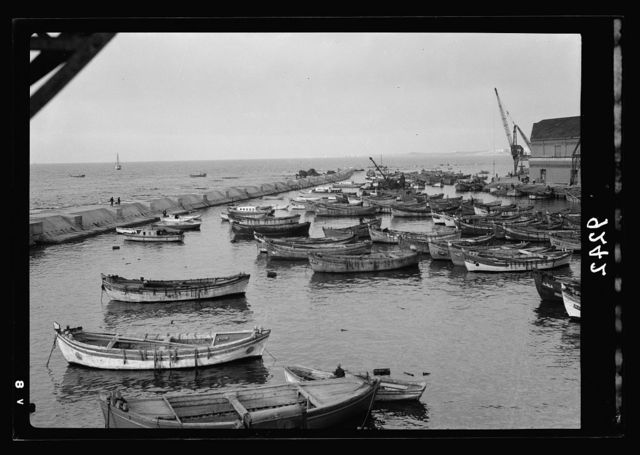 Palestine disturbances 1936. Numerous Jaffa lighters safe behind the new break-water in the lighter port, showing the long arm[?] of concrete in distance reaching out to Andromeda's Rocks