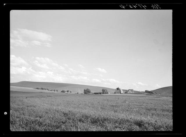 Prosperous farm near Pullman, Washington