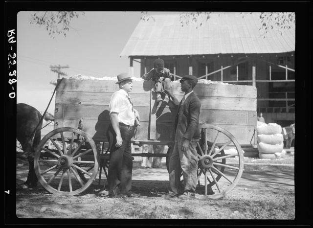Rehabilitation supervisor discusses the cotton crop with one of his clients. Smithfield, North Carolina