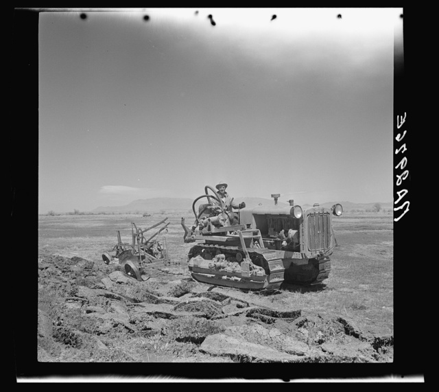 Resettled farmer breaking up new land for farming. Bosque Farms, New Mexico