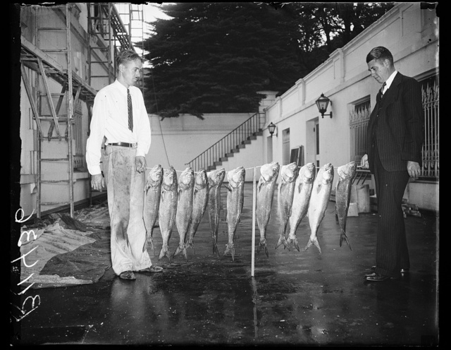 Russel Muir, Chief Usher of the White House, (right) with string of Bluefish caught in Chesapeake Bay, Isaac Avery of the White House staff on the left