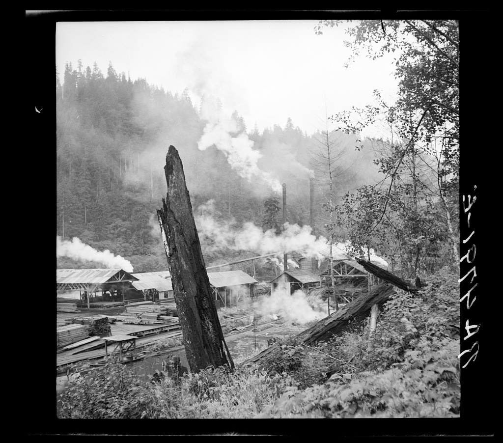 Sawmill near Mapleton, Oregon - PICRYL Public Domain Image