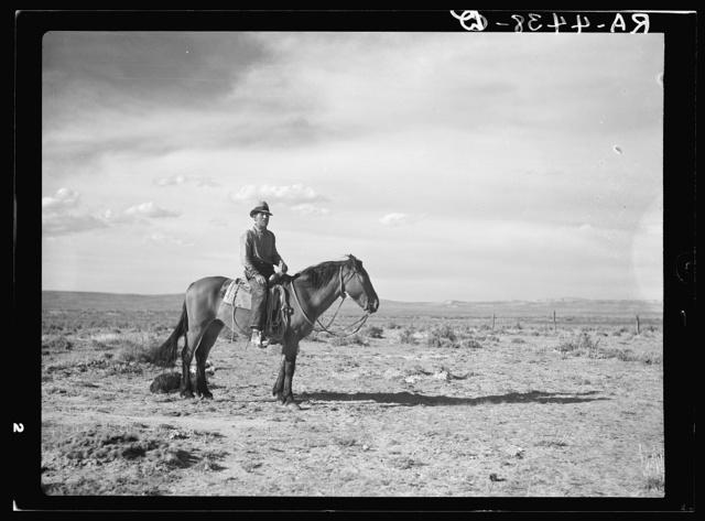 Sheep herder. Natrona County, Wyoming