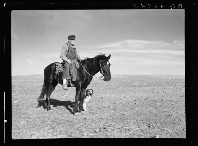 Sheep herder. Pennington County, South Dakota