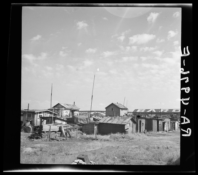 Squatters' shacks along the Willamette River. Portland, Oregon