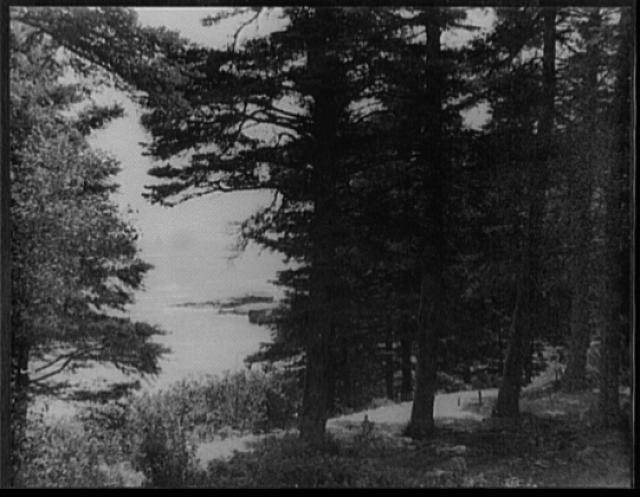 [The sea, near Thunder Hole, Mt. Desert Island, Maine]