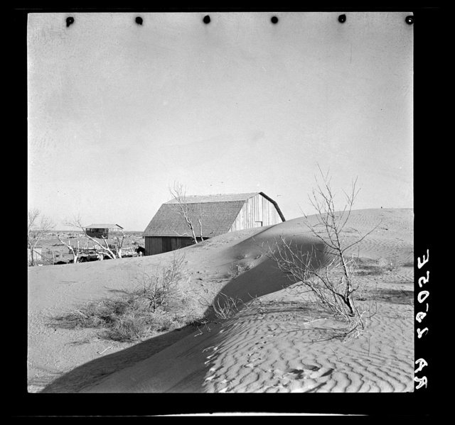 """The winds of the """"dust bowl"""" have piled up large drifts of soil against this farmer's barn near Liberal, Kansas"""