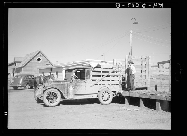 Trucks like these bring the last remnants of the small ranchers' herds to the stockyards. Billings, Montana