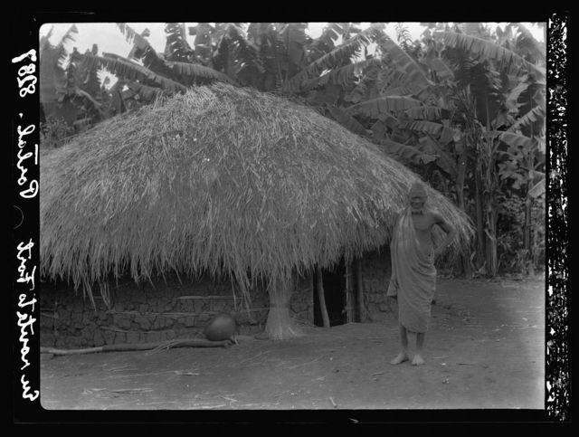 Uganda. From Hoima to Fort Portal. Native hut in a banana plantation