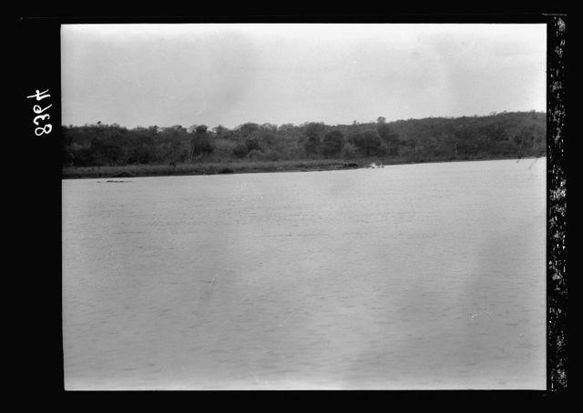 Uganda. Victoria Nile. View along the shore showing hippo on distant shore