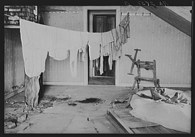 Upstairs laundry room in farmhouse optioned for wildlife area. Albany, County, New York