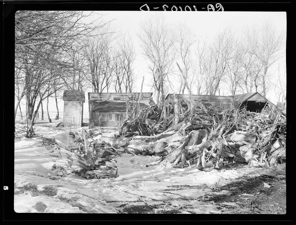 Winter fuel supply on Edgar Allen farm. They hauled old stumps from highway construction, being too poor to buy fuel. This family is being helped by Resettlement Administration, one hundred sixty acres, two-fifths crop, two hundred dollars rent. Allen has had poor crops and has been ill with bronchitis. Near Milford, Iowa