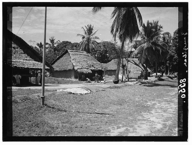 Zanzibar. Native huts among the palms