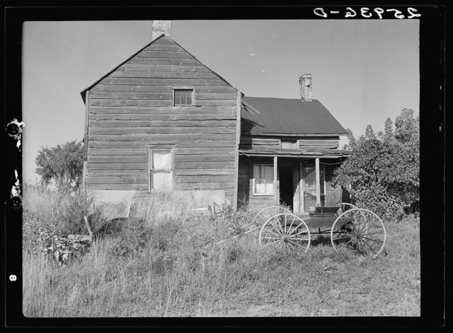 Abandoned farmhouse on submarginal land. Albany County, New York