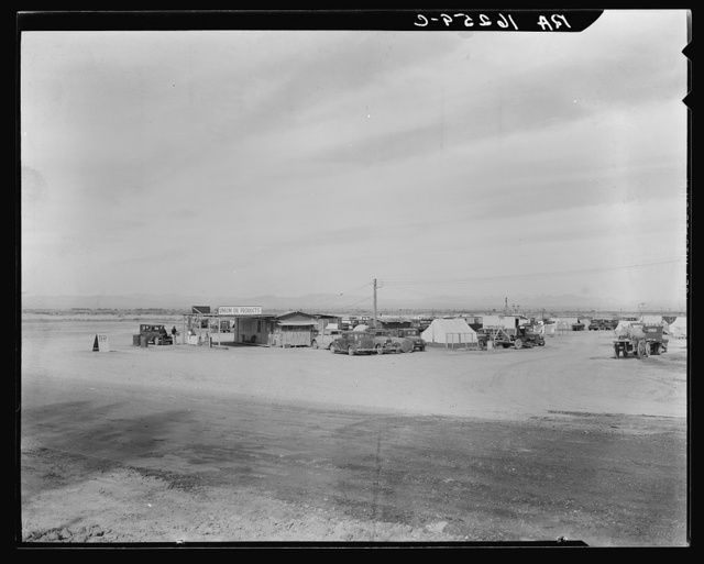 Auto camp north of Calipatria, California. Approximately eighty families from the Dust Bowl are camped here. They pay fifty cents a week. The only available work now is agricultural labor