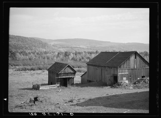 Barns on Lorenzo Clapper's farm. Otsego County, New York