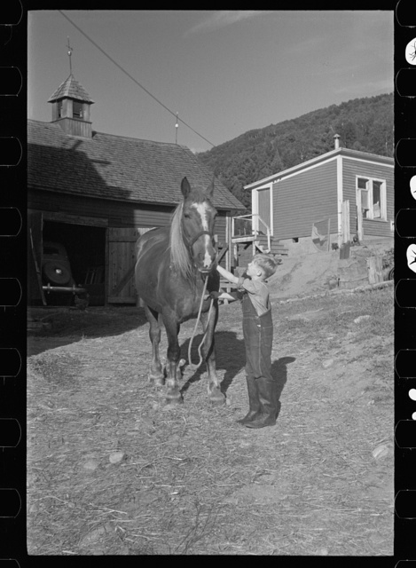 Bob McNally with one of the horses, Kirby, Vermont