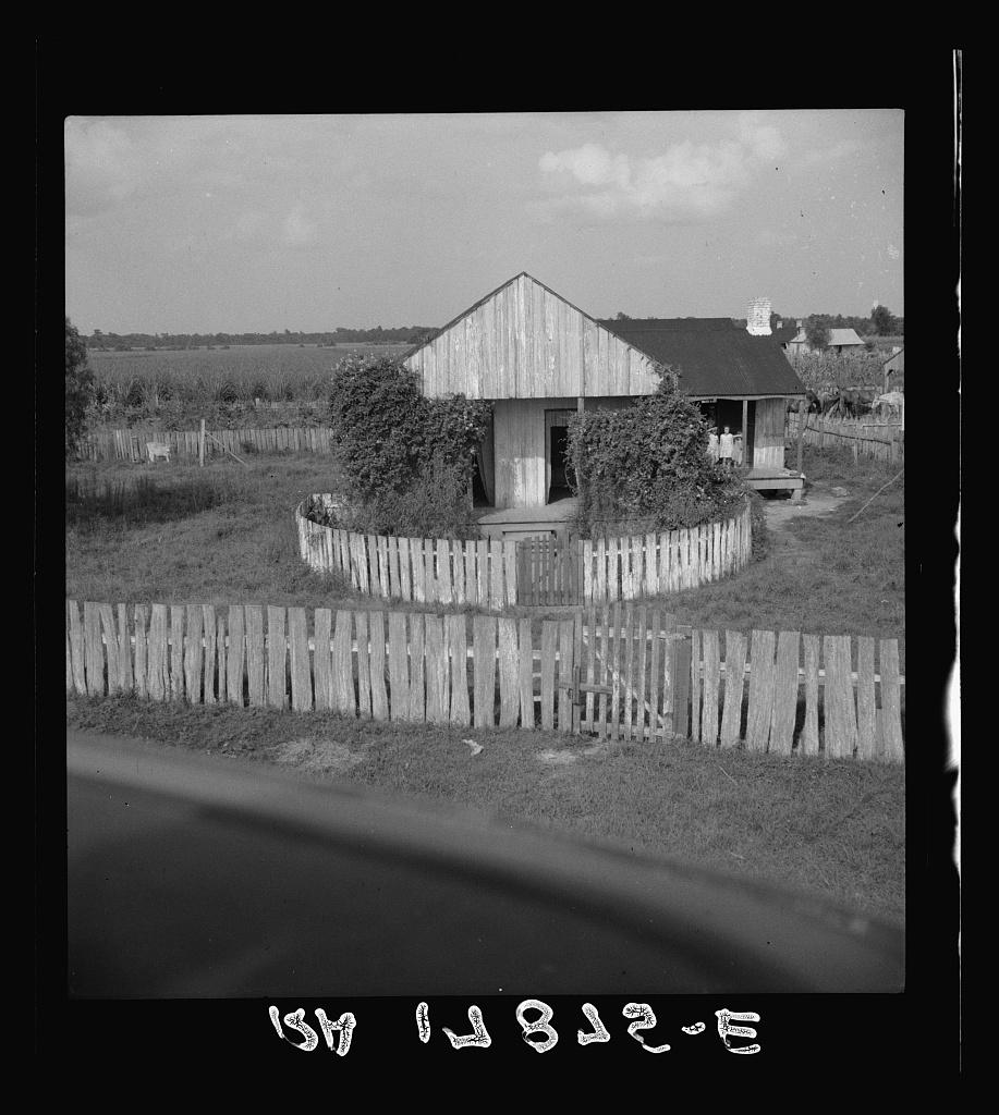 Cabin of sugarcane worker. Bayou La Fourche, Louisiana