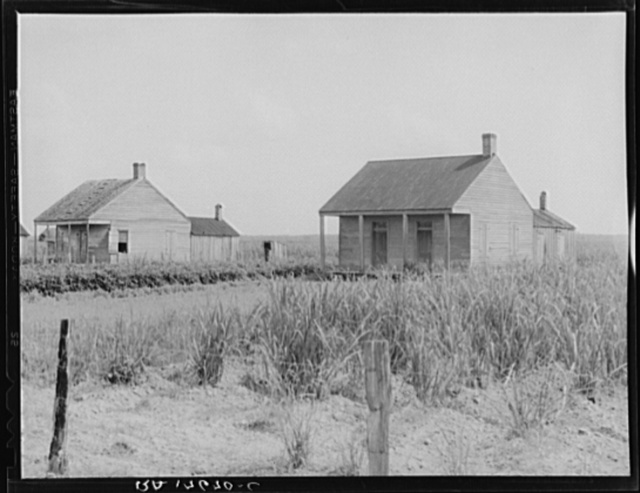 Cabins for sugarcane workers. Bayou La Fourche, Louisiana