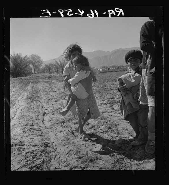 Children of migratory Mexican field workers. The older one helps tie carrots in the field. Coachella Valley, California