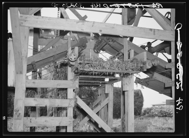 Conveyors at vinery near Sun Prairie, Wisconsin