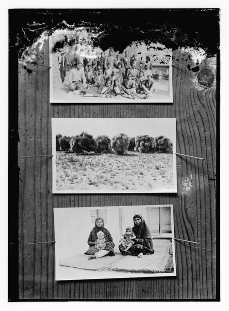 [Copy of photographs showing: group portrait of men seated and standing (top); donkeys carrying large bundles (center); and two women seated with babies (bottom)]