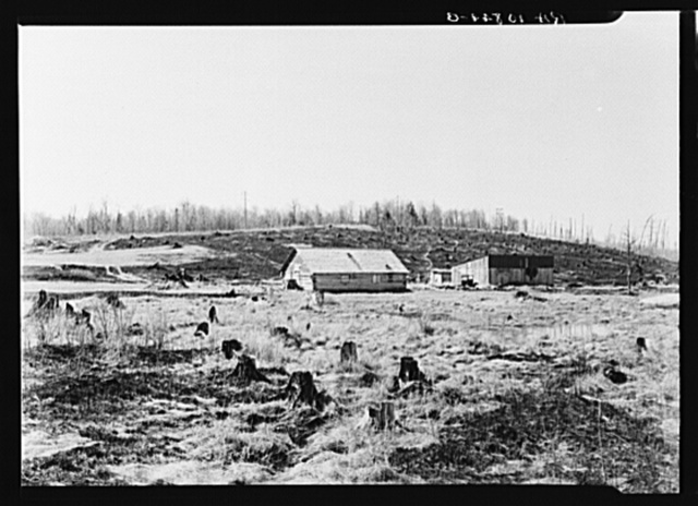 Cut-over farm in Iron County, Michigan. The dried grass has been burned, as is customary among farmers in the spring. This is a doubtful practice because of damage to the humus of the soil