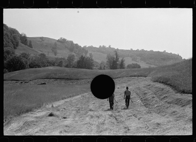 Cutting hay, Windsor County, Vermont