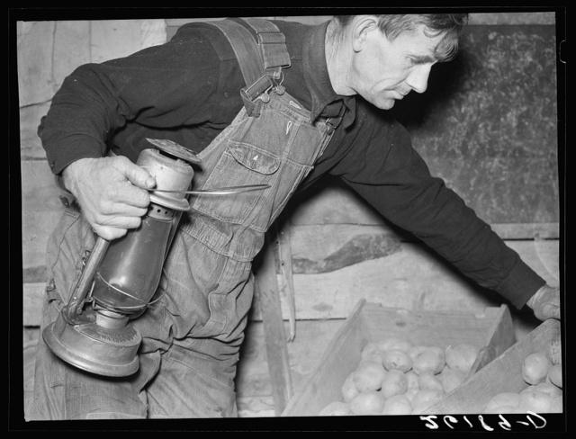 Dalton (vicinity), Allegany County, New York. Fred Ess, a submarginal farmer