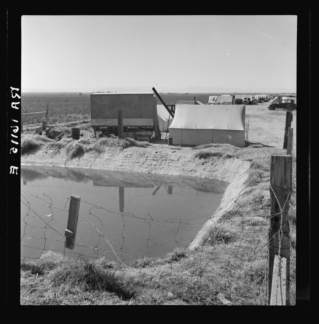 Ditch bank camp for migrant agricultural workers. California
