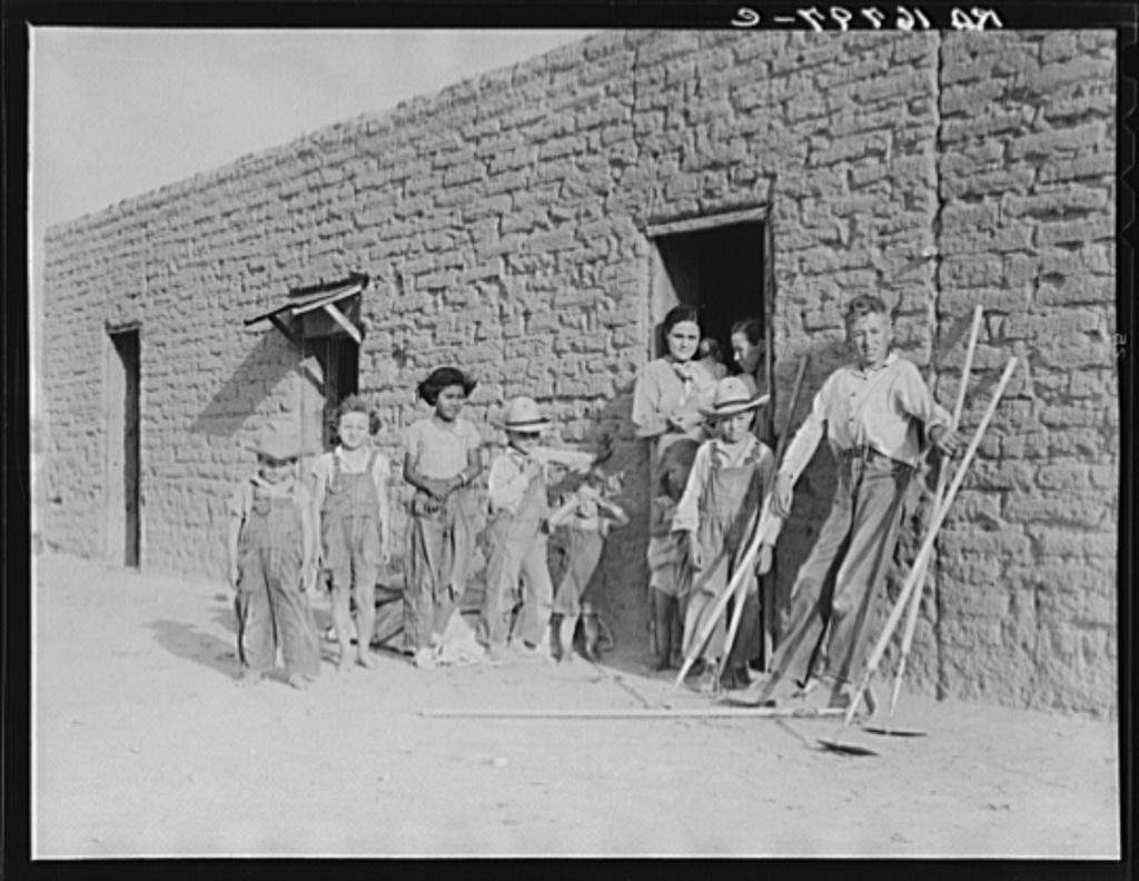 Drought refugee families are now mingling with and supplanting Mexican field laborers in the Southwest. Near Chandler, Arizona