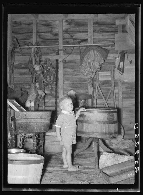 Farmer's son. Albany County, New York