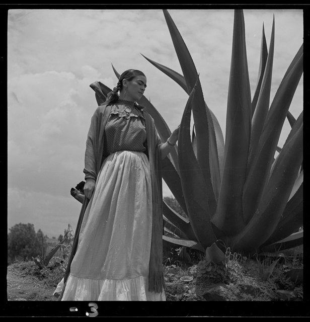 "[Frida Kahlo (Senora Diego Rivera) standing next to an agave plant, during a photo shoot for Vogue magazine, ""Senoras of Mexico""]"