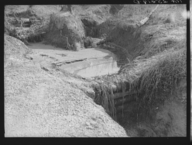 Gully erosion controlled by check dams. Tuskegee Project, Macon County, Alabama