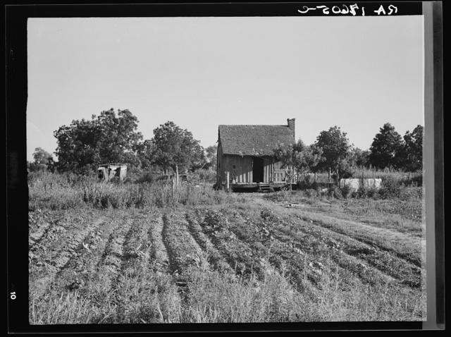 Home of Mississippi tenant farmer