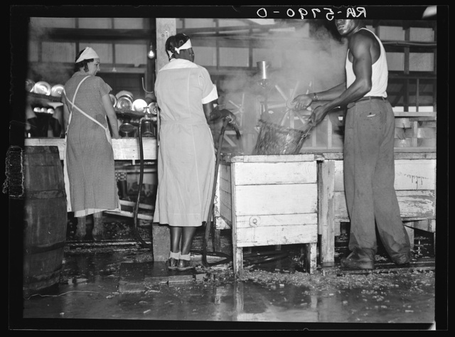 Interior of a vegetable canning plant employing migratory workers near Dania, Florida. The filth-infested water on the floor often affects the health of the employees