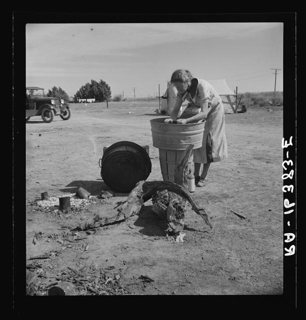Laundry facilities in migratory labor camp. Imperial Valley, California, near Calipatria