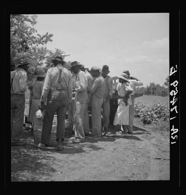 Lunchtime for cotton hoers. Mississippi Delta