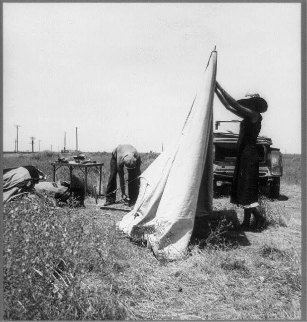 Migrant potato pickers pitching their tent. Often they are without water and sanitary conditions. Near Shafter, California