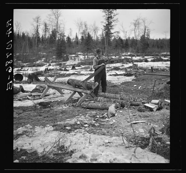 Mr. Smallwood, shacker near Alvin, Wisconsin, sawing wood