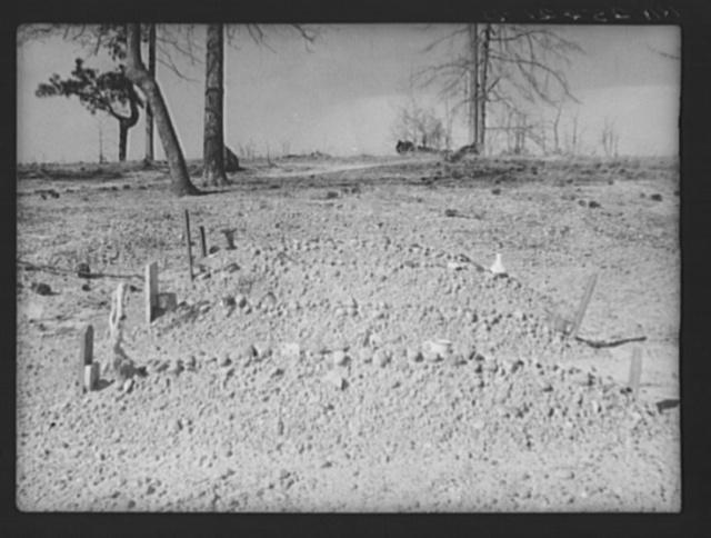 Negroes' graveyard. Macon County, Alabama