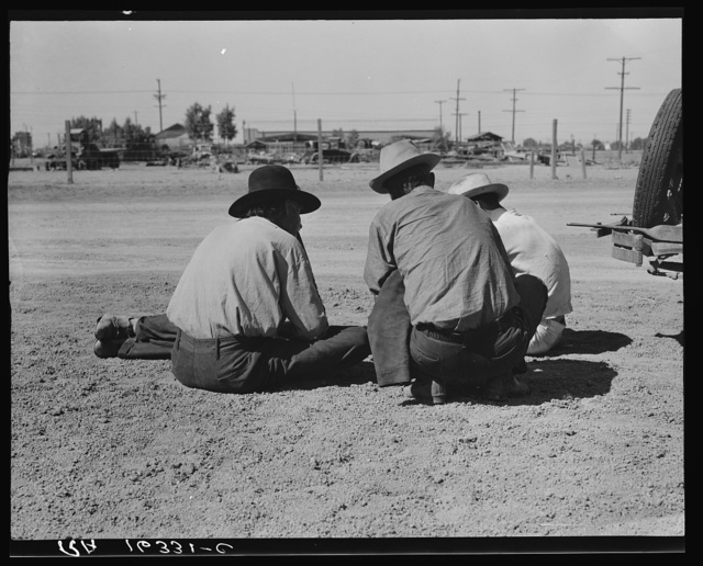 Oklahomans now working or looking for work in the pea harvests of California. Outskirts of Calipatria. Imperial Valley