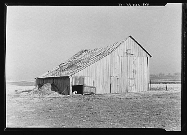 Old barn on John Landers' farm near Marseilles, Illinois. Landers rents this farm from a group of mortgage noteholders who have foreclosed
