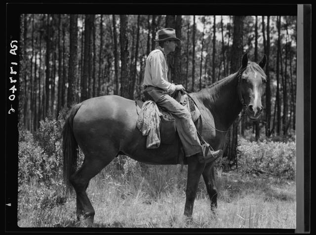 Overseer in the turpentine woods. Georgia