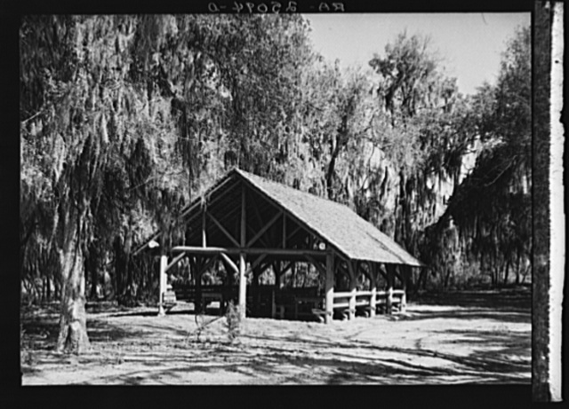 Picnic tables on shores of McKethan Lake. Withlacoochee Land Use Project, Florida