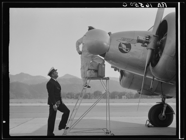Plant quarantine inspectors examining plane at the Glendale Airport, California