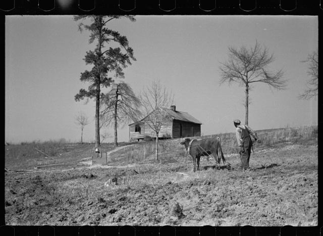 Plowing, Macon County, Alabama