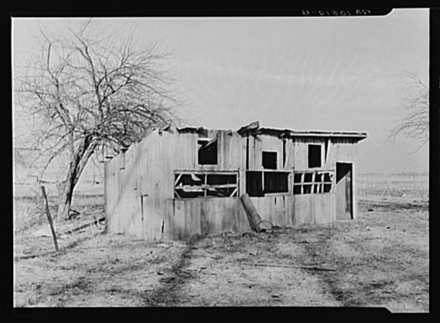 Poultry house on the land rented by Clifford Rowe, twenty-six-year-old tenant farmer. Near Templeton, Indiana